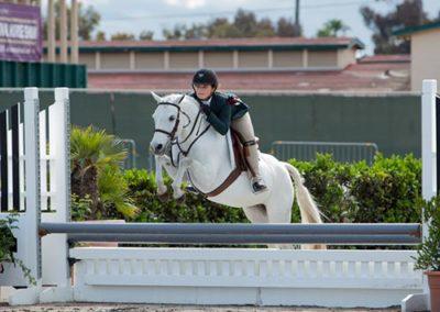 Stella Wasserman and Blueberry Hill Grand Champion Pony Hunter Champion Small Pony Hunter 2016 Del Mar National