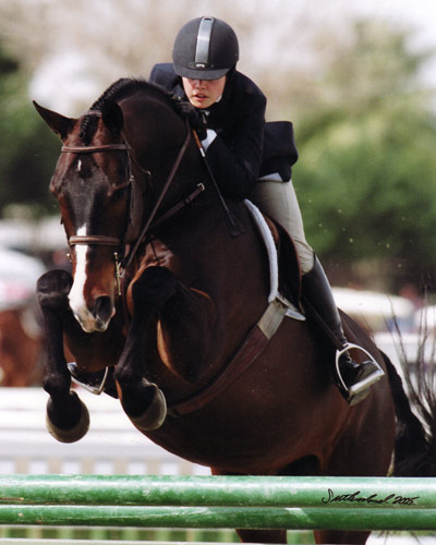 Stephanie Danhakl and Bellingham Bay Champion Large Junior Hunter 16-17 2005 HITS Desert Circuit Photo Flying Horse