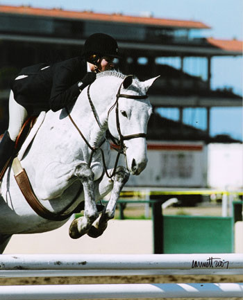 Tina Dilandri and Coal Creek owned by Amy Brubaker 2007 Palms Classic Horse Show Photo Cathrin Cammett