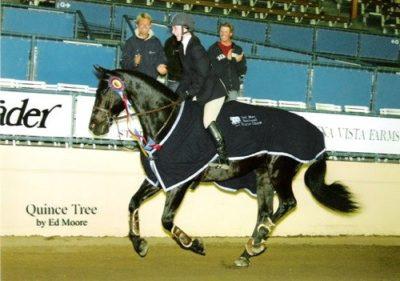 Cathleen Calvert and Norton Winner $25,000 Del Mar Equitation Class 2003 Del Mar National Photo Ed Moore