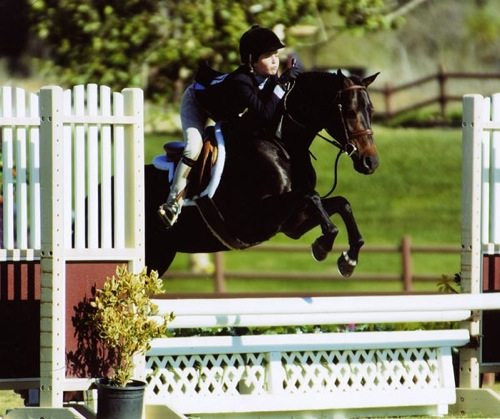 Grace Morton and Tuscany owned by West End Stables 2007 Zone 10 Champion Medium Pony Hunter Photo JumpShot