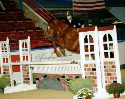 Lucy Davis and Red Rooster Small Junior Hunters 15 & Under 2008 Pennsylvania National Horse Show Photo Anne K Gittens