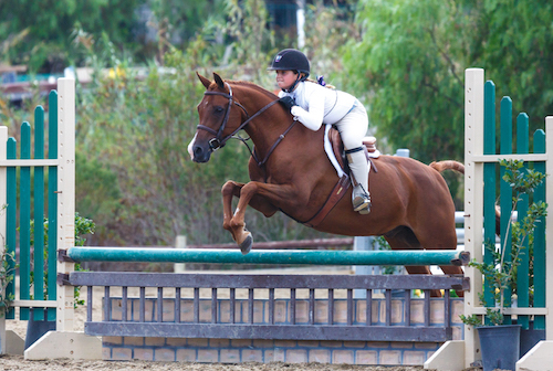 Stella Wasserman and Silly Putty Champion Medium Pony Hunter 2015 Blenheim Fall Tournament