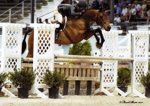 Annette Peterfy and Chance Amateur Owner Hunters 36 & Over 2007 Devon Horse Show Photo Randi Muster
