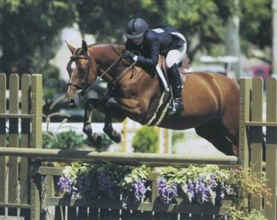 Ashley Pryde and The Frog Prince Numerous Champions Small Junior Hunters 15 and Under 2007 Oaks Blenheim Photo by JumpShot