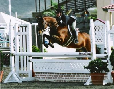 Delanie Stone and Royal Seven 2007 Zone 10 Champion Large Pony Hunters Photo Cathrin Cammett