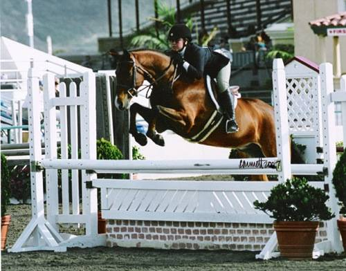 Delanie Stone and Royal Seven 2007 Zone 10 Champion Large Pony Hunters Photo Cathrin Cammett