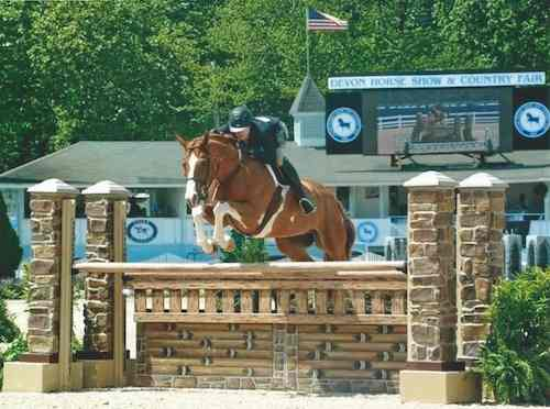 Nick Haness and Banderas owned by Ecole Lathrop High Performance Hunter 2015 Devon Horse Show