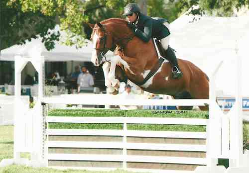 Nick Haness and Ecole Lathrop's Banderas Reserve Champion High Performance Hunter 2015 Menlo Charity Horse Show Photo Deb Dawson