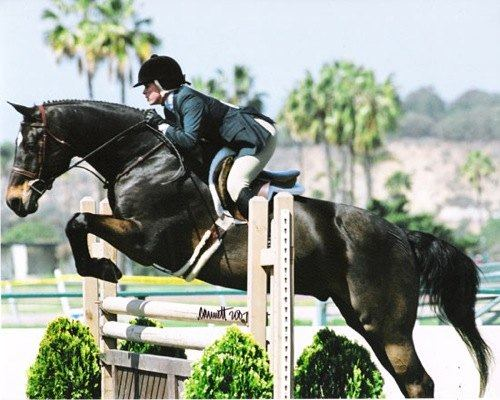 Teddi Jo Mellencamp and Carson owned by Janie Andrew 2007 Palms Classic Horse Show Photo Cathrin Cammett