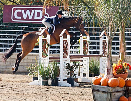 Teddi Mellencamp and Truman owned by Laura Wasserman Regular Conformation Hunter 2011 Los Angeles National