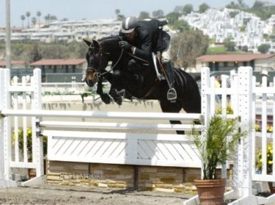 Archie Cox and Henderson owned by Jane Fraze 2007 Del Mar National Photo Ed Moore