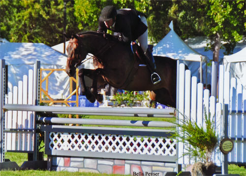 Archie Cox and Victory Road owned by Harriet Posner Regular Conformation Hunter 2012 Menlo Charity Horse Show Photo Bella Peyser