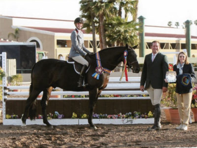 """Jenny Karazissis and Thoughtful owned by Laura Wasserman Champion Performance Hunter 3'3"""" 2013 Del Mar National Photo Osteen"""