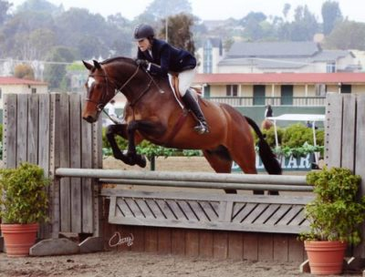 Joan Hasteltine and Biltmore Amateur Owner Hunters 2011 Del Mar National Photo Osteen