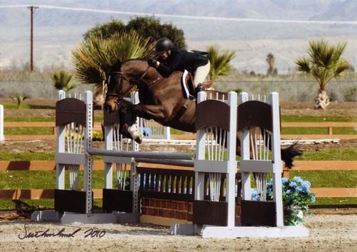 Laura Wasserman and Czech Winner A-O Hunters 36 & Over 2010 HITS Desert Circuit Photo Flying Horse