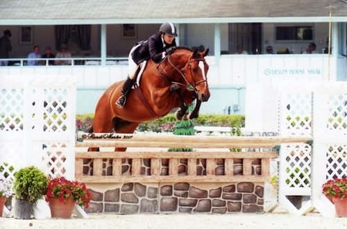 Laura Wasserman and Overseas Amateur Owner Hunters 36 & Over 2007 Devon Horse Show Photo Randi Muster