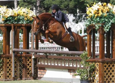 Lily Blavin and Pringle Small Junior Hunter 15 & Under Photo Captured Moment Photography