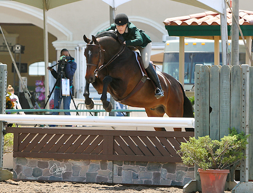 Montana Coady and Ranger Amateur Owner Hunter 2015 Del Mar National Photo Osteen