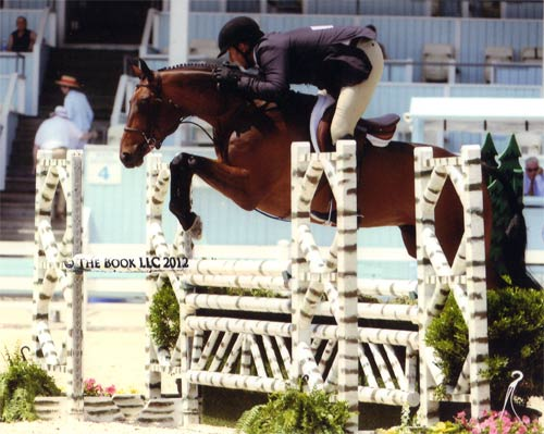 Archie Cox and After Five owned by Stephanie Danhakl Regular Conformation Hunter 2012 Devon Horse Show Photo The Book LLC