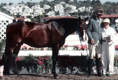 Archie Cox and Bellingham Bay owned by Stephanie Danhakl Winner Showdown Perpetual Trophy Winner Regular Conformation Stake Del Mar National Photo Ed Moore