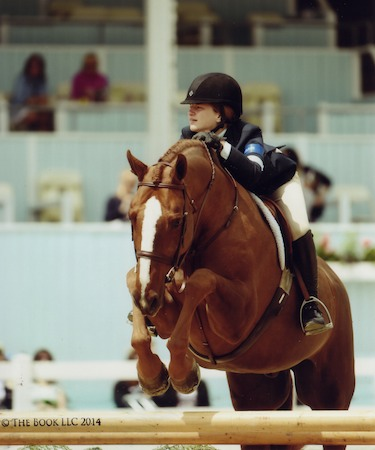 Hunter Siebel and Pure Abundance owned by Mountain Home Stables Large Junior Hunter 15 & Under 2014 Devon Horse Show Photo The Book LLC
