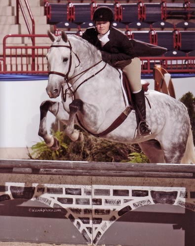 Jessica Singer and Cruise NAL Finals 2011 Pennsylvania National Horse Show Photo Al Cook