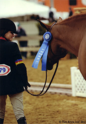 Lily Blavin and Pringle Childrens Hunter 12-14 2012 Capital Challenge Photo The Book LLC