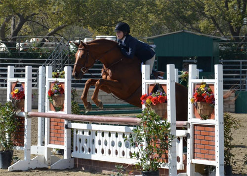 Lily Blavin and Sander Large Junior Hunter 15 & Under 2013 Los Angeles Equestrian Center
