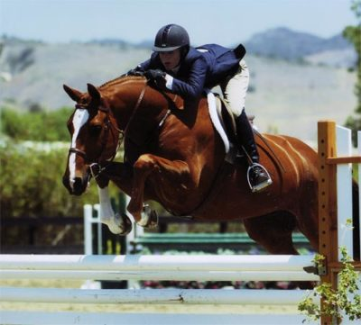 Nicole Hasteltine and Wesley owned by Joan Hasteltine Small Junior Hunters 16-17 2007 Blenheim Photo by JumpShot