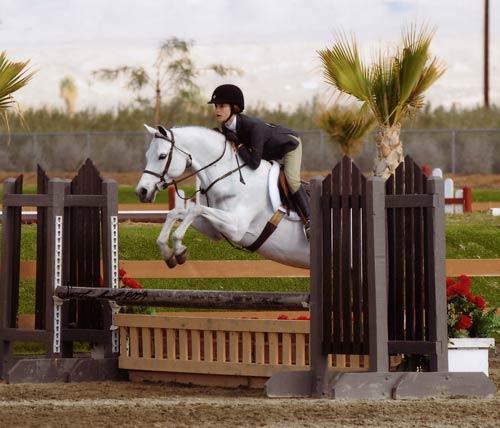 Skylar Nelson and Macy Grey Circuit Champion Medium Pony Hunters 2009 HITS Desert Circuit Photo Flying Horse