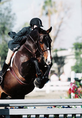 Stephanie Danhakl and Bellingham Bay 2004 HITS Desert Circuit Champions Photo Flying Horse
