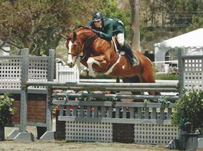 Nick Haness and Banderas owned by Ecole Lathrop Champion High Performance Hunter 2014 Ranch & Coast Photo Captured Moment