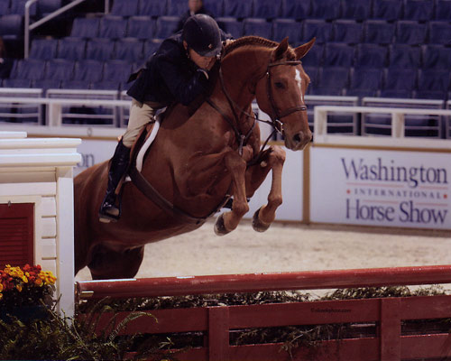 John French and Pringle owned by Ashley Pryde First Year Green Hunter 2008 Washington International Photo Al Cook