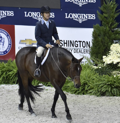 Laura Wasserman's Boss ridden by John French Grand Hunter Champion 2015 Washington International