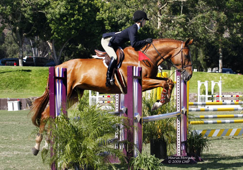 Gabbi Langston Reserve Champion CPHA Foundation medal Finals 21 & Under 2009 Showpark Photo Captured Moment