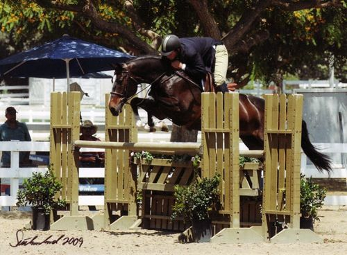 Archie Cox and Masterpiece owned by Erika Ekberg Regular Working Hunters 2009 Showpark Photo Flying Horse