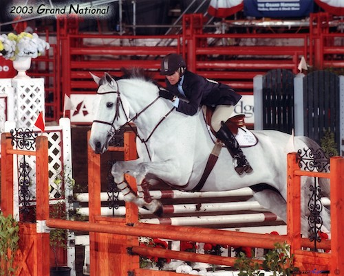 Gail Barrett and Puttin on the Ritz Adult Jumper 2003 Grand National Photo PhotoFast