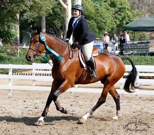 Chelsea Samuels and Bruno Mars 8th Overall CPHA Foundation Finals 22 & Over 2013 Showpark Summer Classic Photo Captured Moment