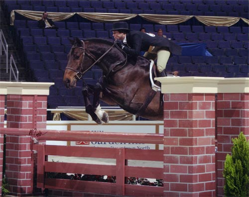 Wynn Alden and Call Me owned by Archie Cox Winner Regular Conformation Hunters 2005 Washington International Photo Al Cook