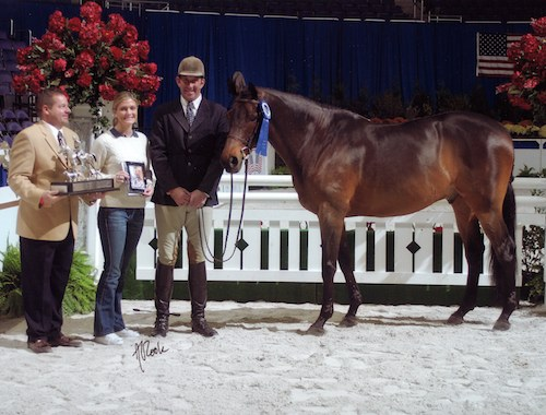 Chance owned by Montana Coady Regular Conformation Hunter 2004 Washington International Photo Al Cook