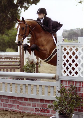 Ashley Pryde and Falcao owned by Brook Flynn Reserve Champion Small Junior Hunters 2009 Showpark Photo by Captured Moment