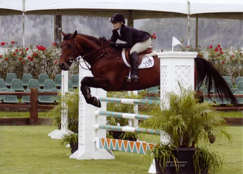 Ashley Pryde and Chaucer Modified Junior-A/O Jumpers 2009 Showpark Photo Captured Moment