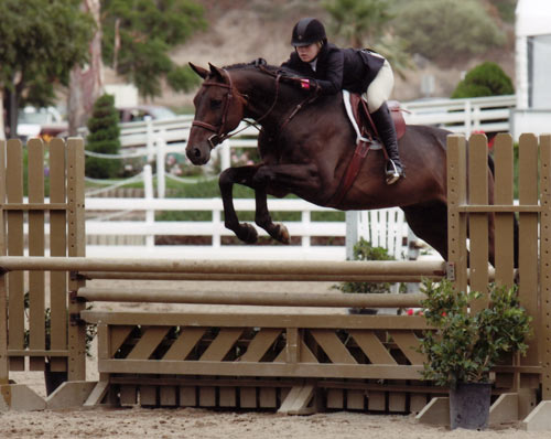 Ashley Pryde and Victory Road Large Junior Hunters 16-17 2010 Showpark Photo Horse in Sport