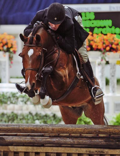 Archie Cox and Beckham owned by Gina Ross Regular Conformation 2011 Washington International Photo Shawn McMillen