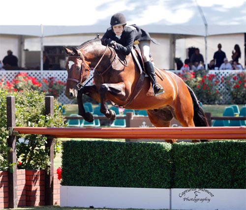 Nicole Hasteltine and Biltmore $10,000 Special USHJA Hunter Derby 2012 Showpark Racing Festival Photo Captured Moment