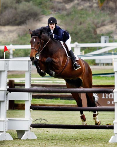 Nicole Hasteltine and Copado Modified Amateur Owner Jumper 2012 Showpark Ranch & Coast Photo Captured Moment