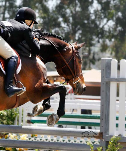 Ashley Pryde and Truly Amateur Owner Hunter 18-35 2012 Showpark Ranch & Coast Photo Captured Moment