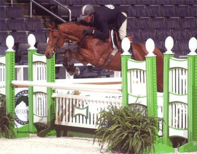 Archie Cox and White Oak owned by Delanie Stone Winner Regular Conformation Hunters 2007 Washington International Photo Al Cook