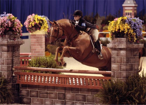 Ashley Pryde and Pringle Small Junior Hunters Washington International Photo Al Cook